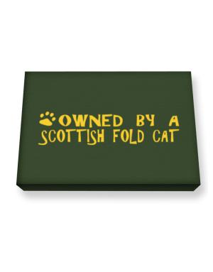 Owned By A Scottish Fold Canvas square