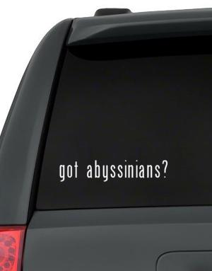 Got Abyssinians? Decal Pack