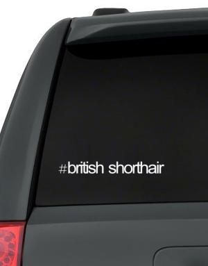 Hashtag British Shorthair Decal Pack