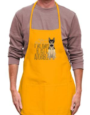 It will always be fast & adorable Belgian malinois Apron
