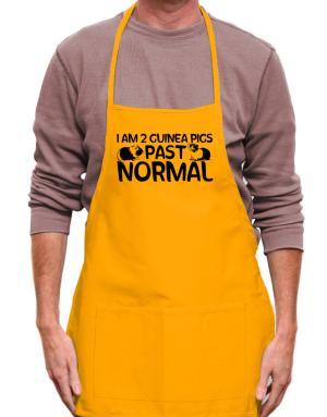 I am two guinea pigs past normal Apron