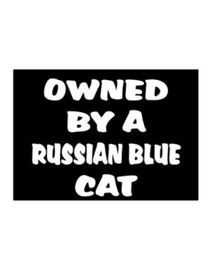 Owned By S Russian Blue Sticker