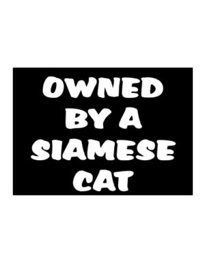 Owned By S Siamese Sticker