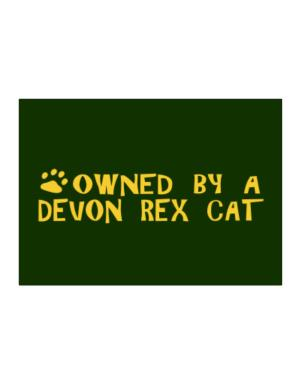 Owned By A Devon Rex Sticker