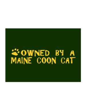 Owned By A Maine Coon Sticker