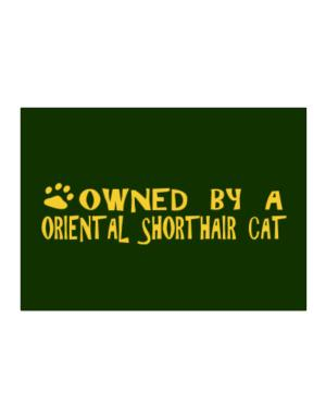 Owned By An Oriental Shorthair Sticker