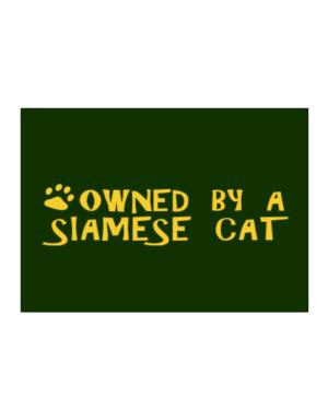 Owned By A Siamese Sticker