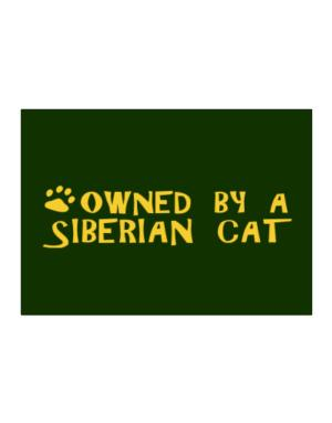 Owned By A Siberian Sticker