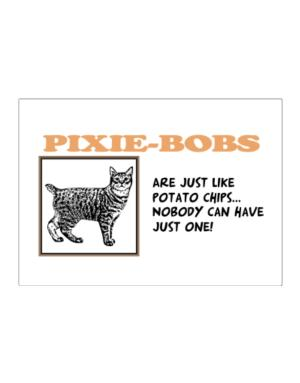 Pixie-Bobs are just like potato chips Sticker