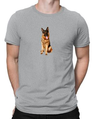 Polo de German Shepherd