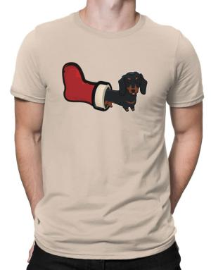 Polo de Dachshund Stocking Stuffer