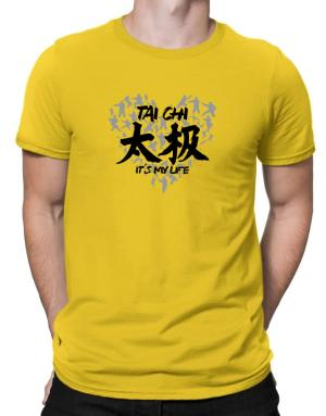Polo de Tai chi It