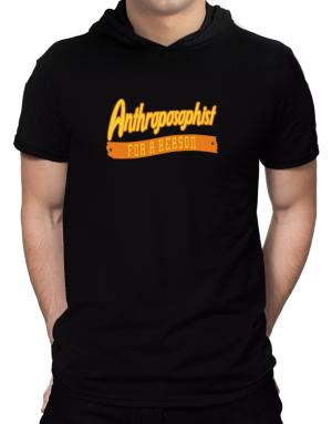 Anthroposophist For A Reason Hooded T-Shirt - Mens
