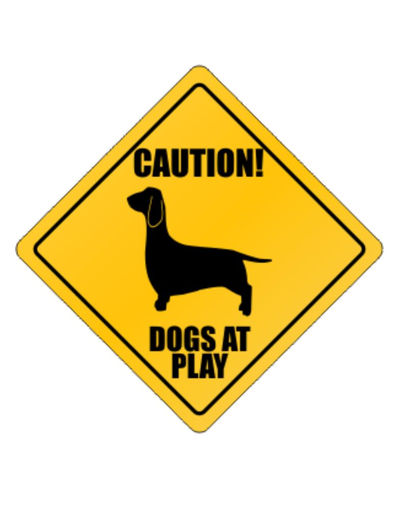 """ Dogs at play Dachshund """