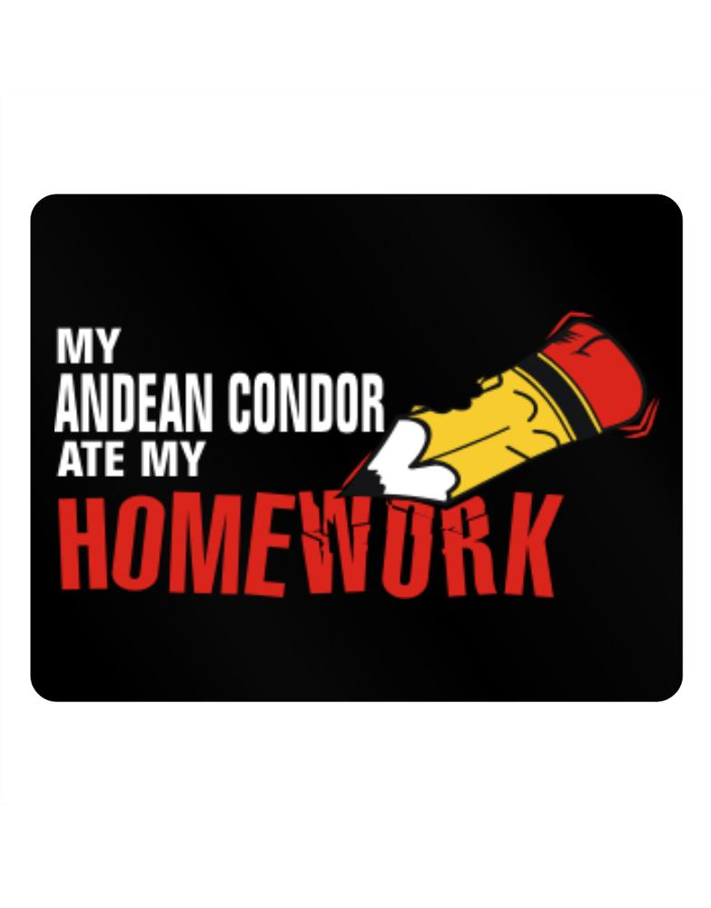 My Andean Condor Ate My Homework
