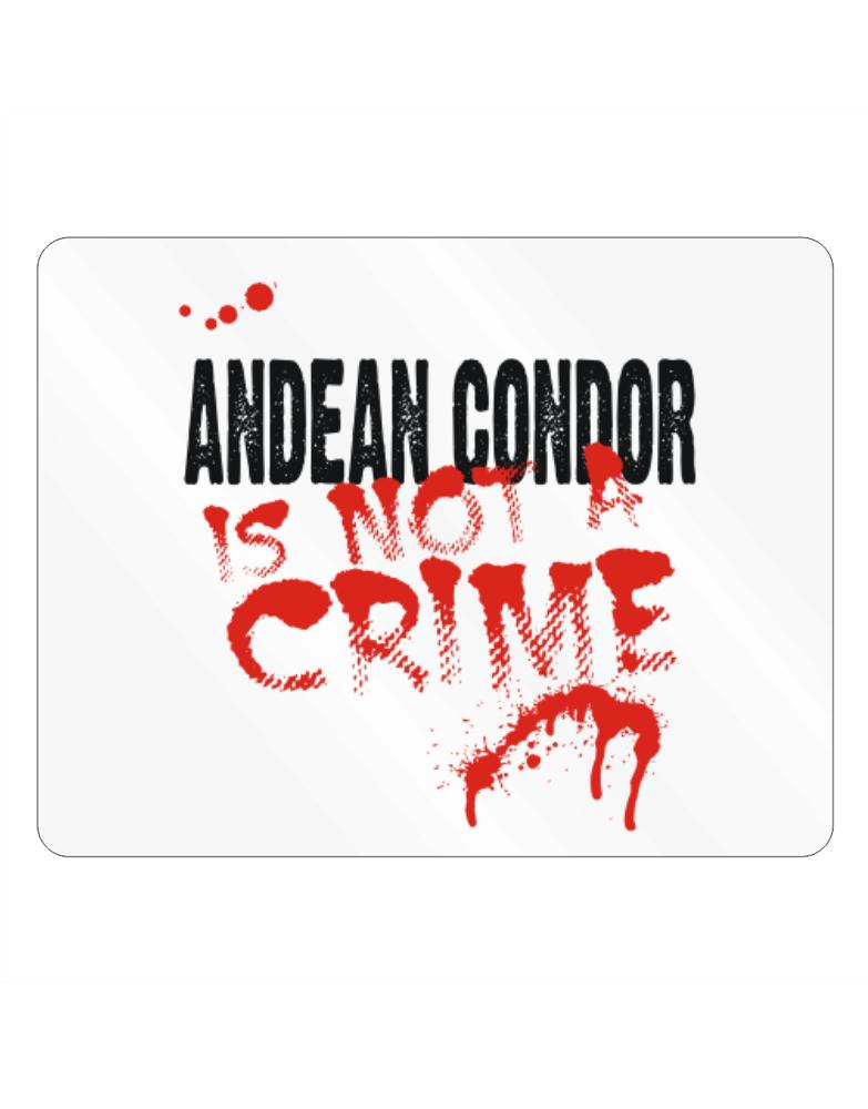Being A ... Andean Condor Is Not A Crime