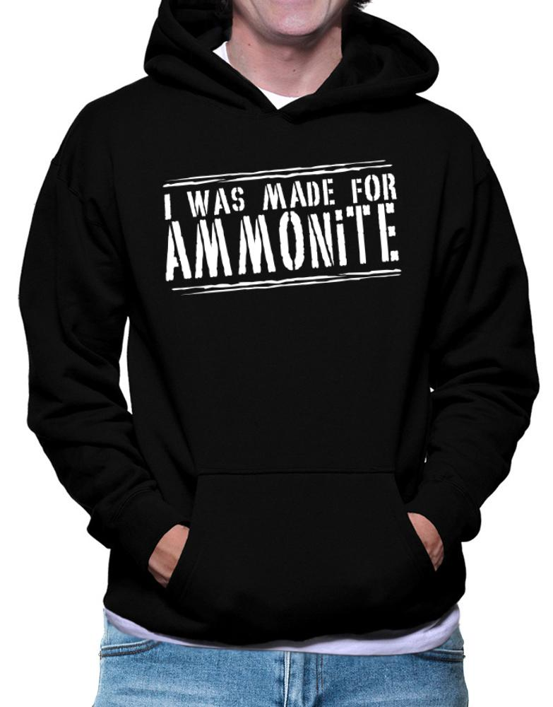 I Was Made For Ammonite