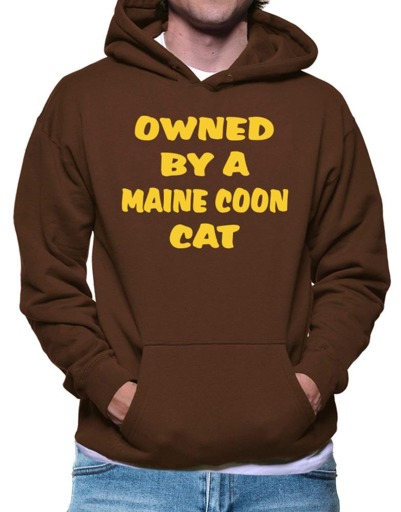 Owned By S Maine Coon