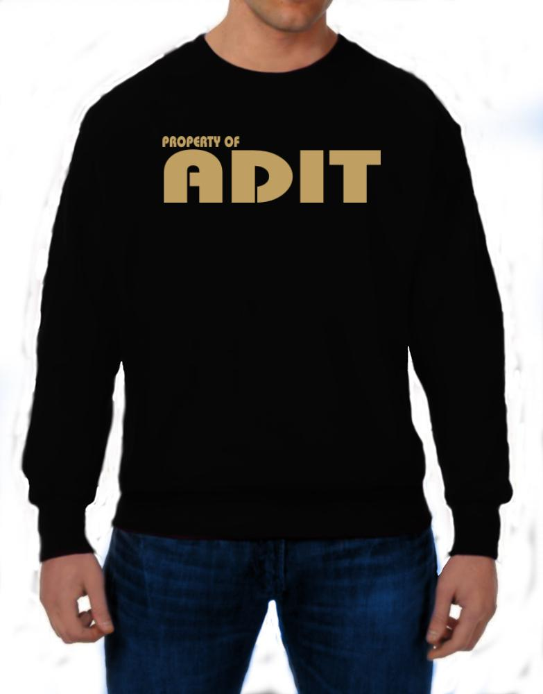 Property Of Adit