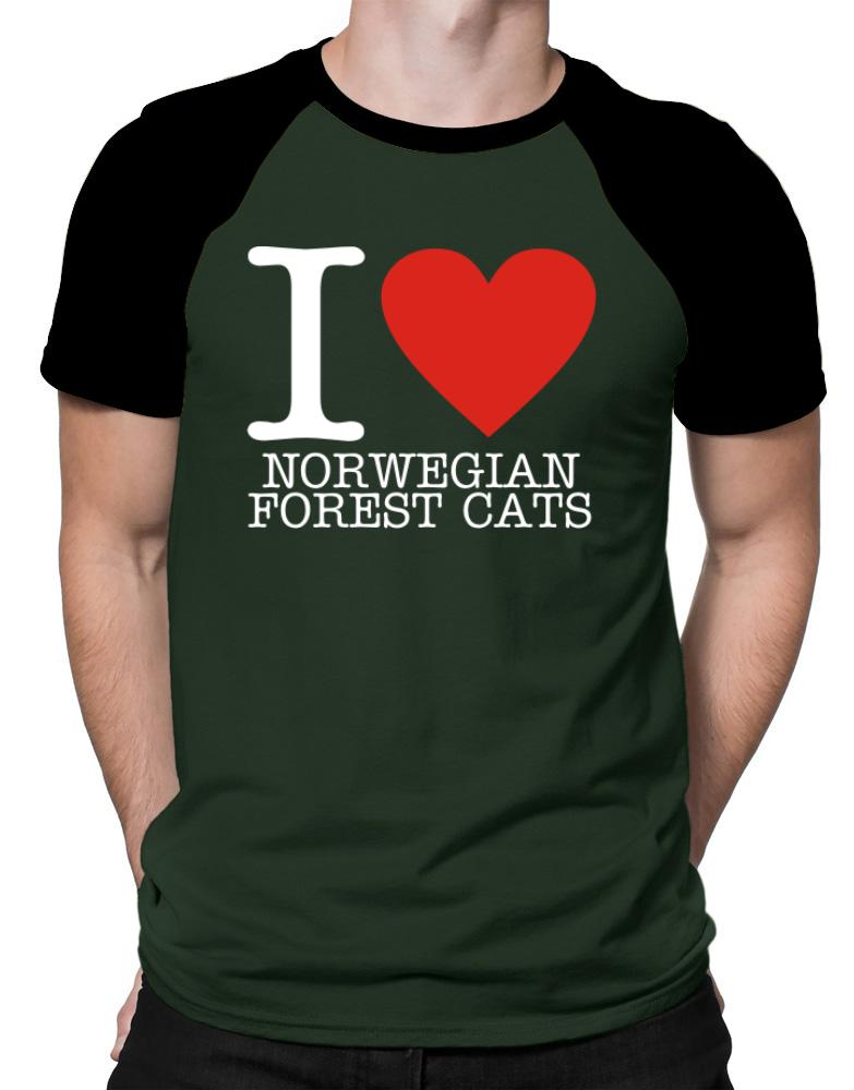 I Love Norwegian Forest Cats