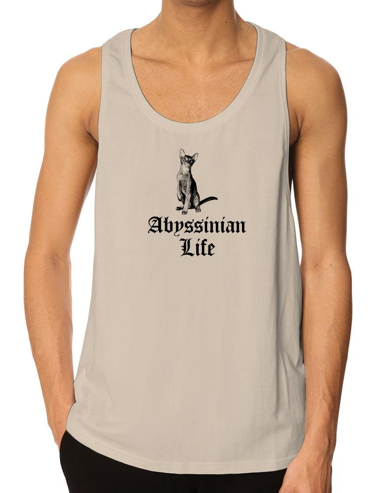 Abyssinian life
